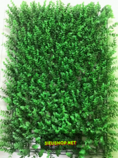 Cỏ Tai Chuột Treo Tường 40cmx60cm